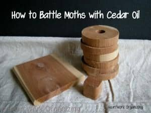 prevent clothing moths with cedar oil