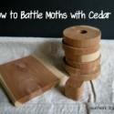 Moth Control- Using Cedar Oil to Keep Closets Moth Free