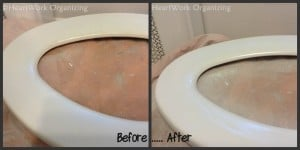 painted toilet seat makeover
