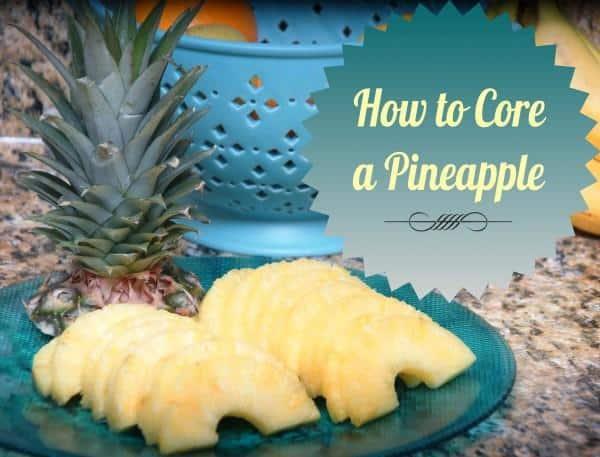 Coring a Pineapple pin