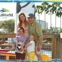 SnowDay Alternative: SeaWorld Orlando