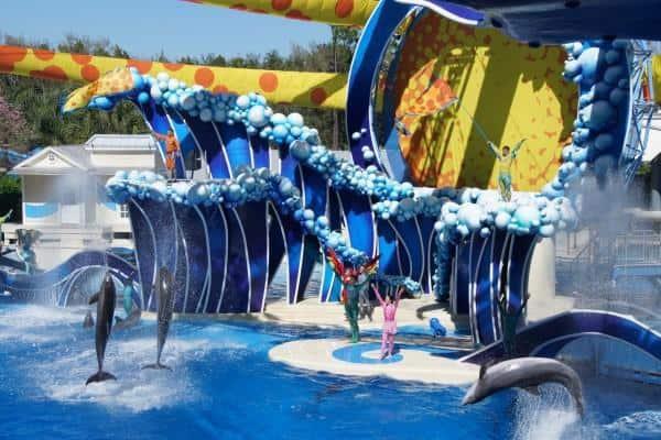 SeaWorld Orlando Dolphins