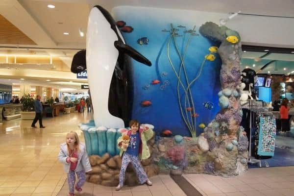 SeaWorld Orlando Airport