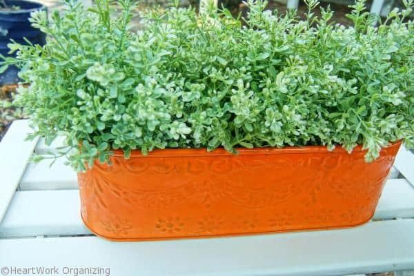 orange planter in porch decor