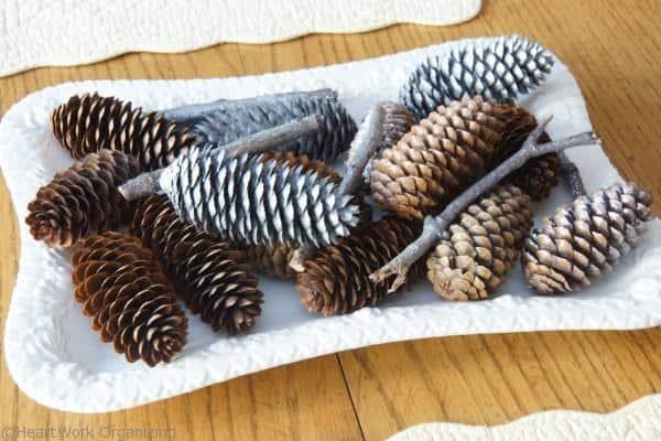 pine cones (2)