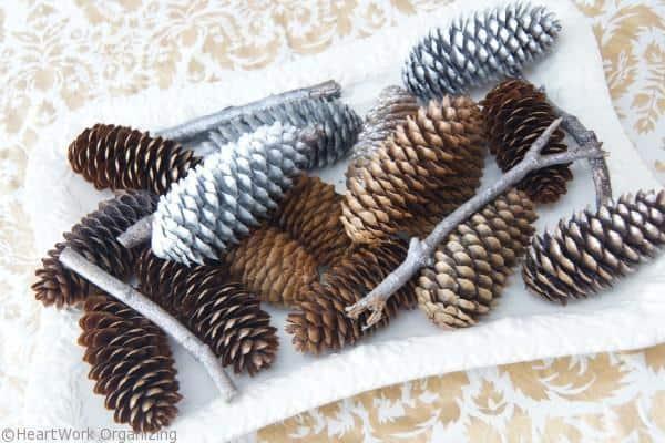 pine cones (4)