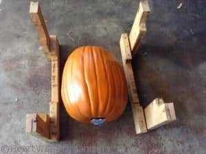 check DIY Crate size with pumkins