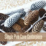 Simple Pine Cone Centerpiece