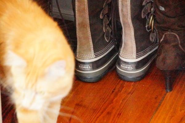 Shoe closet (5)