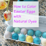 Color Easter Eggs with Natural Dyes