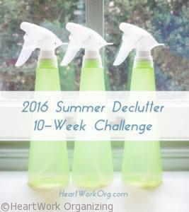 10 week organizing challenge