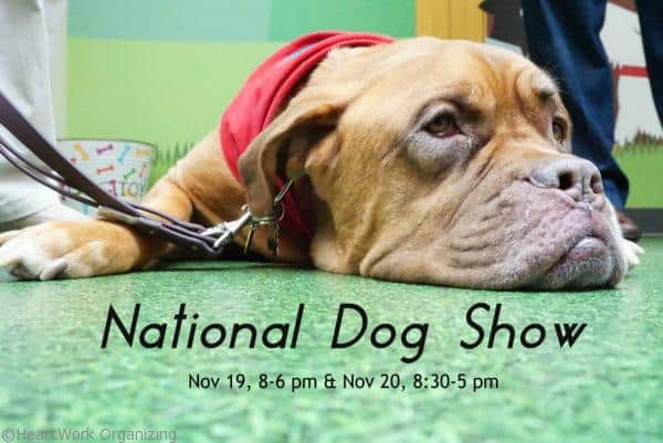 national-dog-show-title