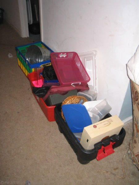 organizing containers are the clutter