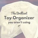 The Brilliant Toy Organizer You Aren't Using (Yet)