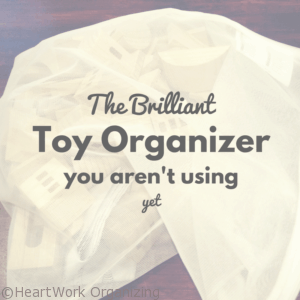 The Brilliant Toy Organizer You Aren't Using Yet