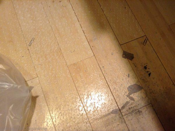Office Chair Mat For Carpet Ruins Hardwood Floors (2)