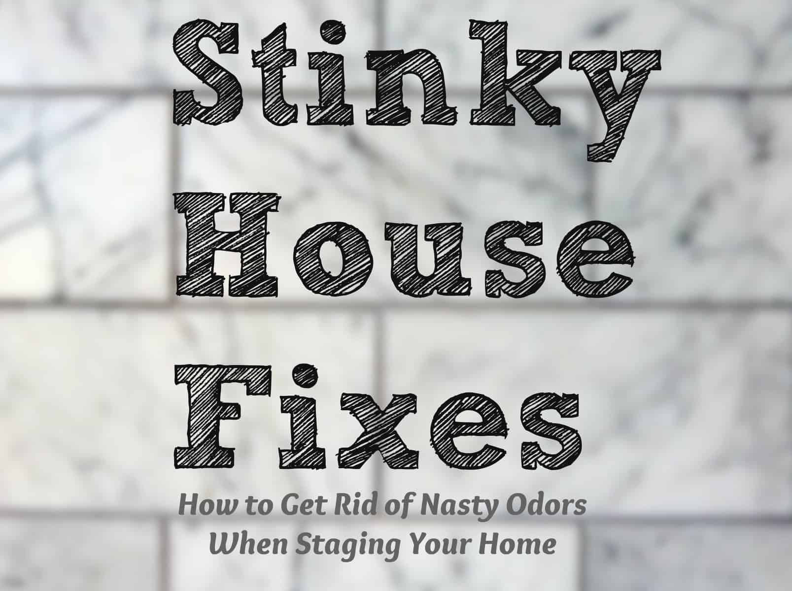 stinky house how to get rid of nasty odors when staging heartwork organizing tips for. Black Bedroom Furniture Sets. Home Design Ideas
