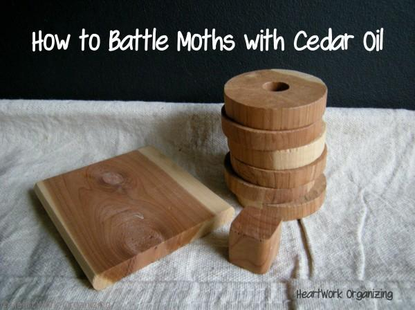 Moth Control How To Use Cedar Oil To Control Moths