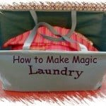 How a Professional Organizer Performs Laundry Magic
