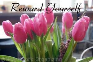 Read more about the article 31st Organizing Project: Reward Yourself