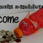 Financial Organizing- Income