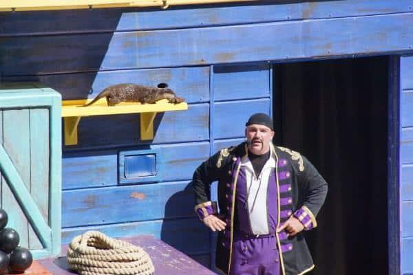 SeaWorld Orlando Clyde and Seymour Shows