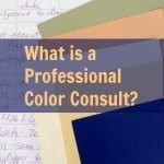 What is a Professional Color Consult?