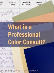 Read more about the article What is a Professional Color Consult?