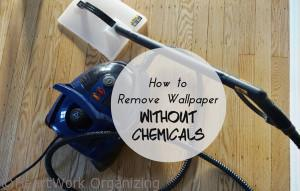 Read more about the article How to Remove Wallpaper Without Chemicals