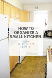 Read more about the article How to Organize a Small Kitchen (With Gratuitous Giraffe)