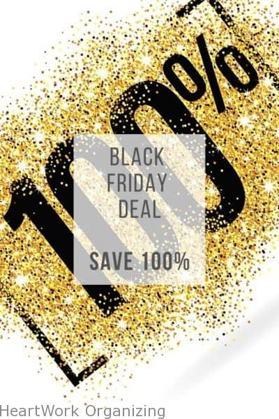 Save 100% for Black Friday On Organizing Book
