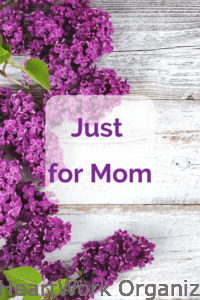 Read more about the article Just for Mom (Flash Offer for Organizing Appointment)